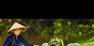 Gıda Güvenliği ve Uluslararası İklim Görüşmeleri