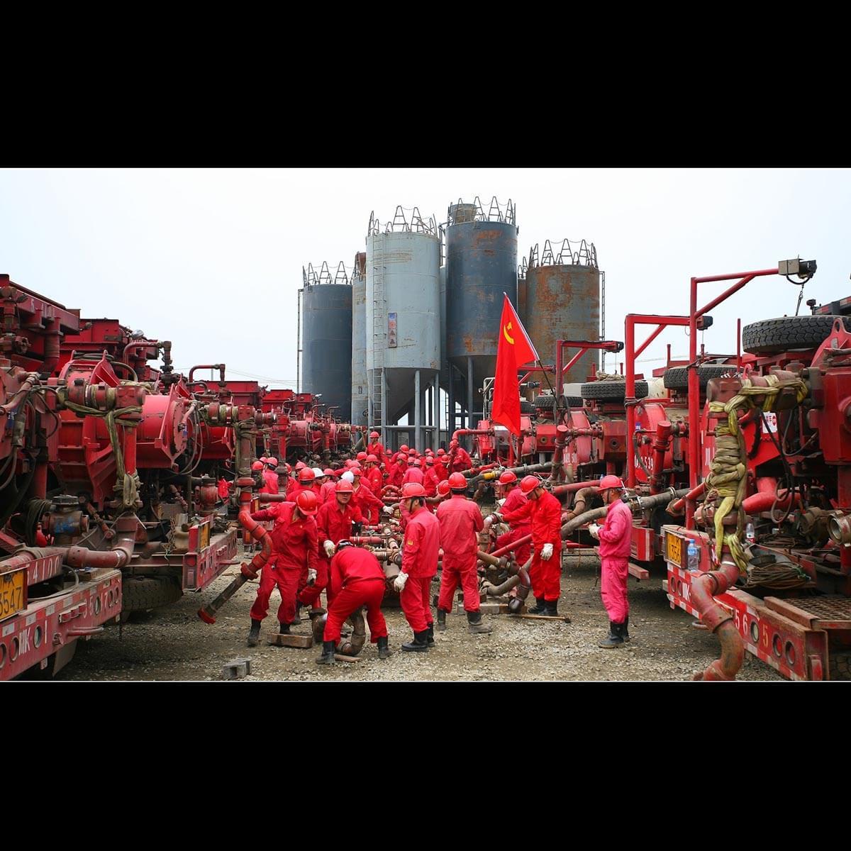 Çin doğa katliamlarına yenisini ekliyor