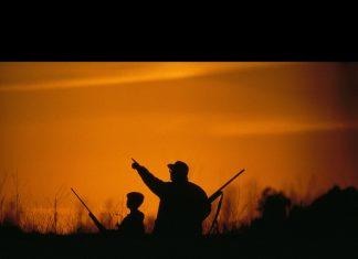 Doğu Anadolu'daki aşırı avcılık yaban hayatı bitiriyor.