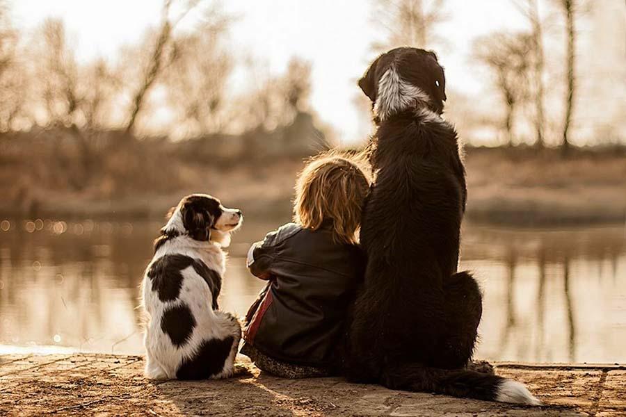 doga ve hayvan dostu cocuklar 1