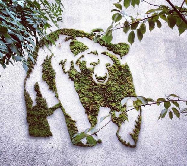 yosun graffitisi