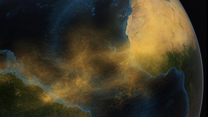 Amazon Ormanları'nı besleyen Sahara Çölü