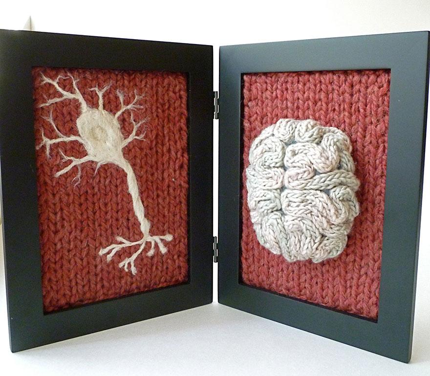 Anatomi Sanat 8