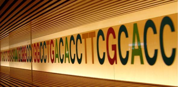 Yabancı genler