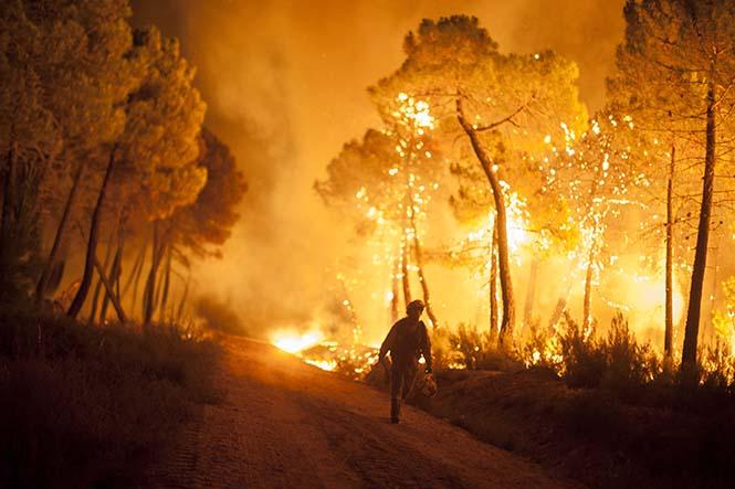 İspanya'da yaşanan orman yangınlarından bir kare.