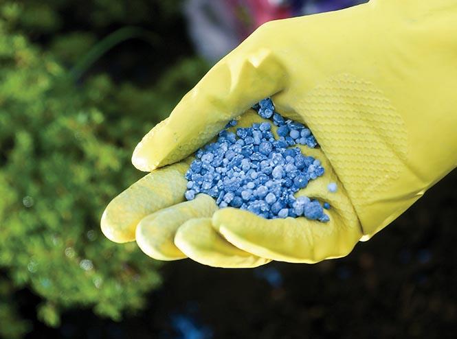 Kimyasal gübre  Doğal tarımın babası Fukuoka'dan sürdürülebilirlik ilkeleri Kimyasal g C3 BCbre