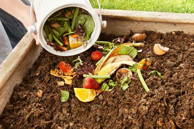 Kompost Yapmak 1