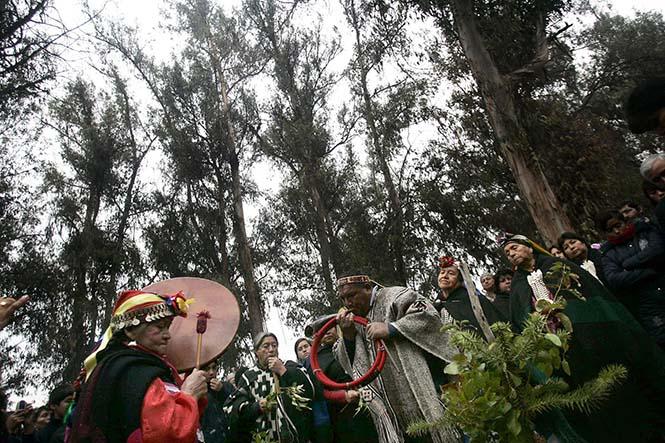 Mapuçeler'in kutlaması