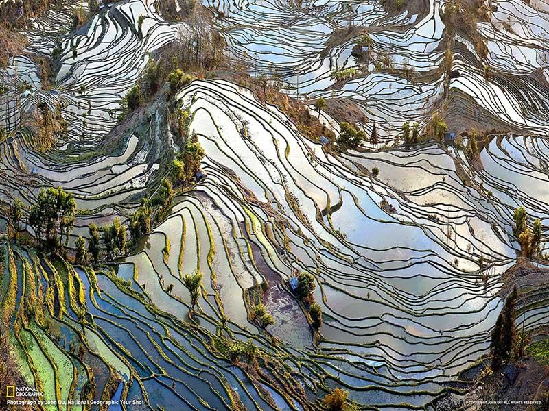 Yuanyang Pirinç Tarlaları