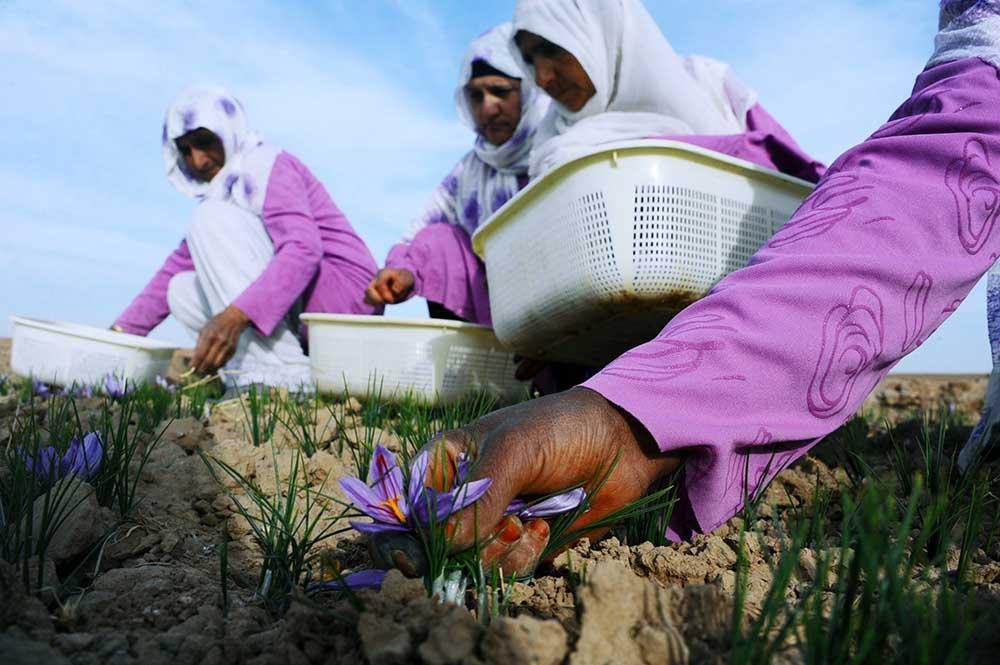 Afganistan Kadın 1