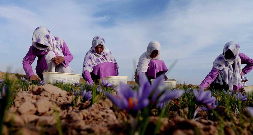 Afganistan Kadın 5  Afganistan'ın taç yaprakları kadınlar için açılıyor Afganistan Kad C4 B1n 5