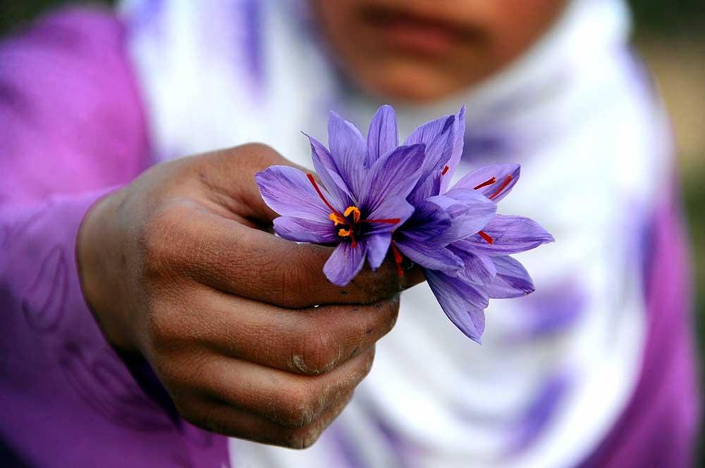 Afganistan Kadın 6  Afganistan'ın taç yaprakları kadınlar için açılıyor Afganistan Kad C4 B1n 6