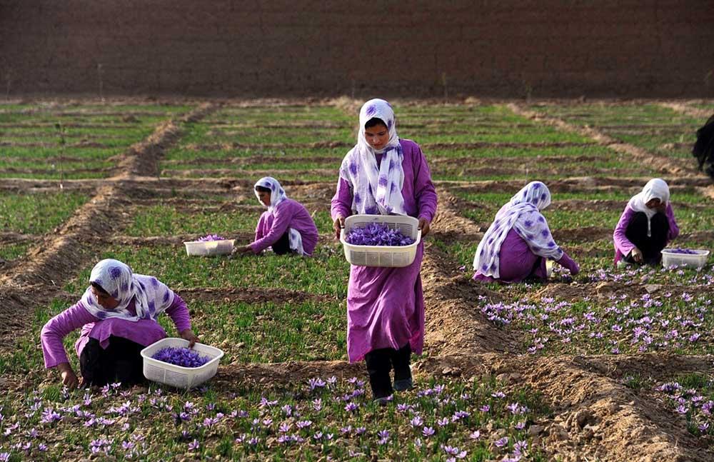 Afganistan Kadın 7