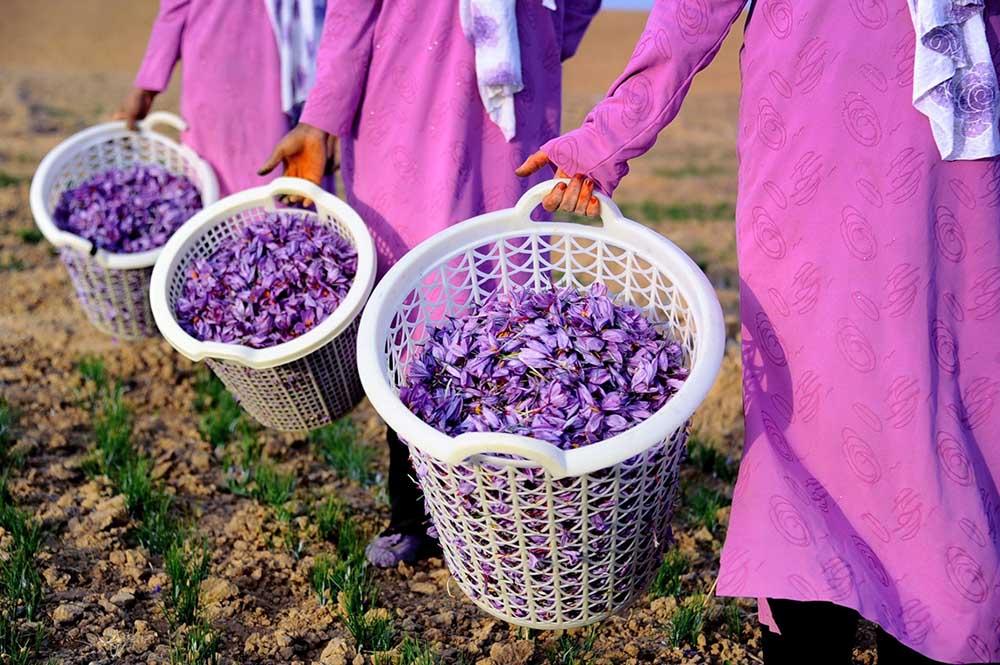 Afganistan Kadın 8  Afganistan'ın taç yaprakları kadınlar için açılıyor Afganistan Kad C4 B1n 8