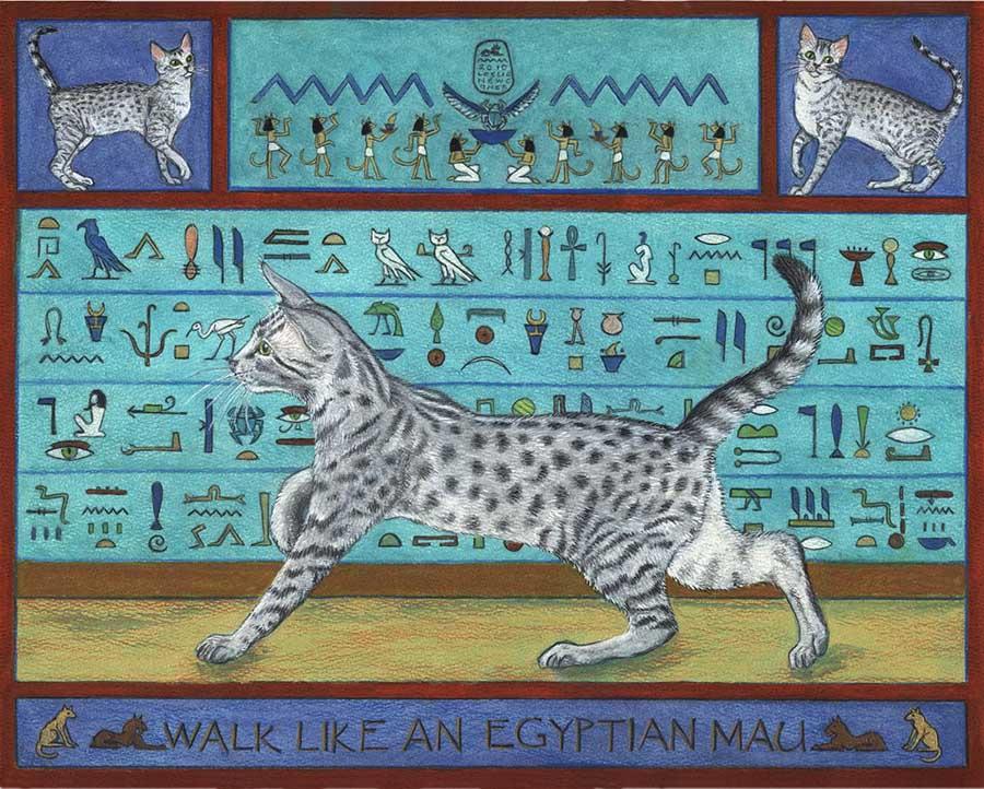 Antik Mısır Kedi