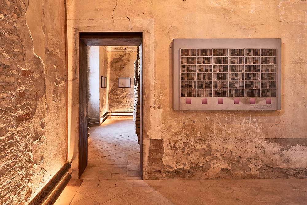 Dışkı Müzesi 2