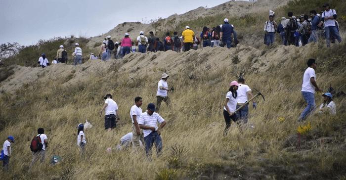 Ekvador Yeniden Ağaçlandırma