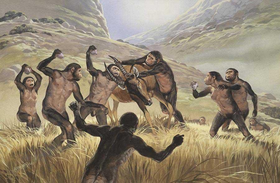 Homo habilis türünün avlanmasını betimleyen çizim. (Görsel: Fine Art America)