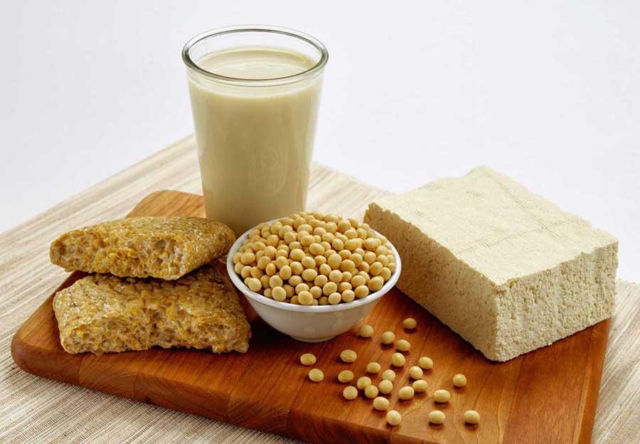 Soya Ürünleri 1