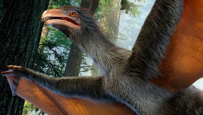 Yi qi dinozor 2