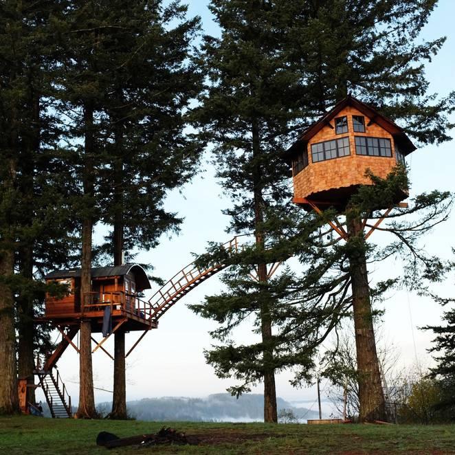 Foster Huntington, ağaç ev, Amerika