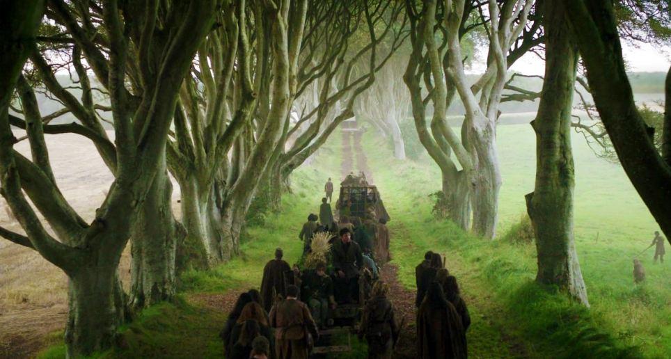Ballymoney Karanlık Ağaçlık 2
