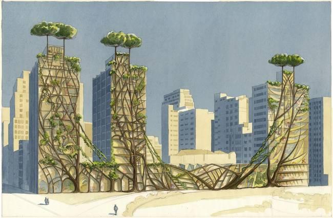 Bitkisel Şehirler 9