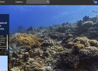 Google'dan Dünya Okyanuslar Günü'ne özel su altı haritalandırma sitesi