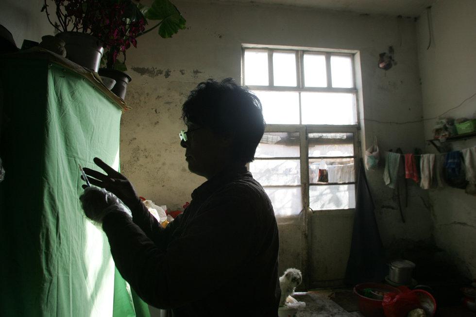 Yulin Festivali, Yang Xiaoyun 6