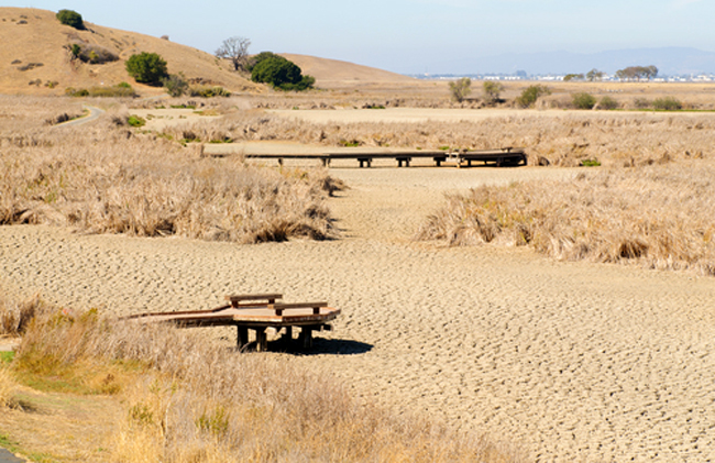 iklim, su, kuraklık 3