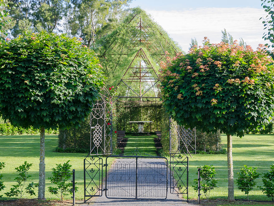 Ağaç Kilise 2 Yeni Zelandalı bahçeci Yeni Zelandalı bahçeci ve ağaçlardan yaptığı harika kilisesi A C4 9Fa C3 A7 Kilise 2