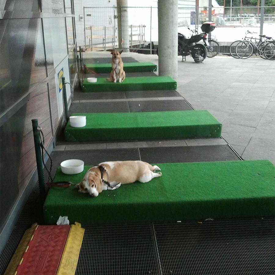 Ikea Köpek Parkı 3