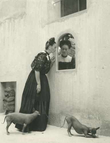 Lola Alvarez Bravo. Frida Looking Into Mirror With Dogs, c. 1944. Courtesy of Throckmorton Fine Art