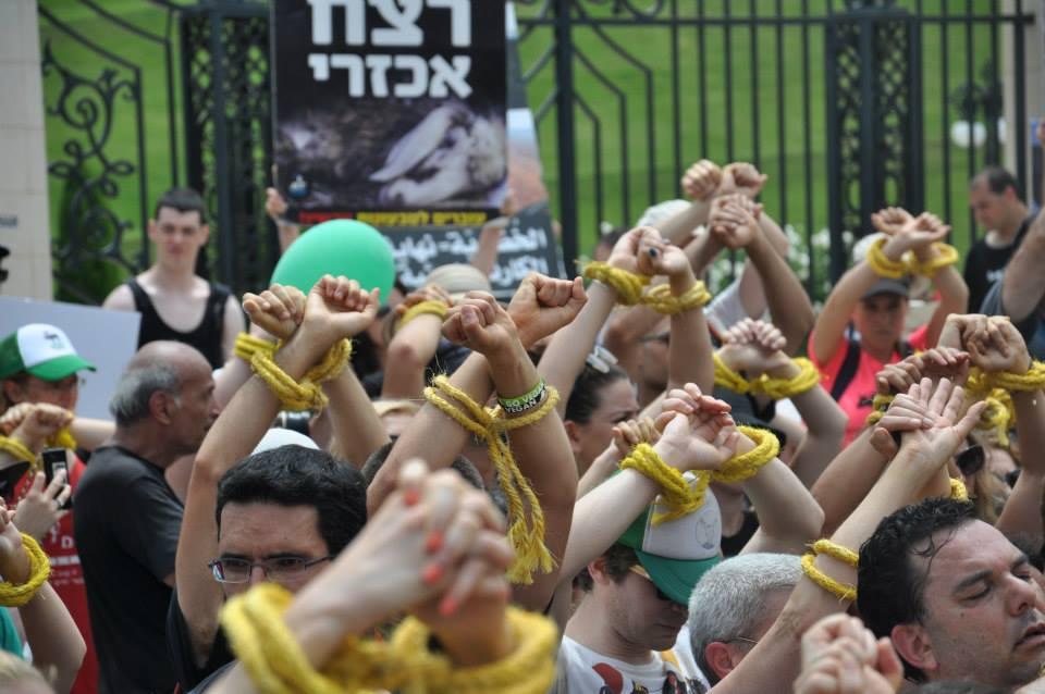 Arap Yahudi Vegan Aktivizm 4