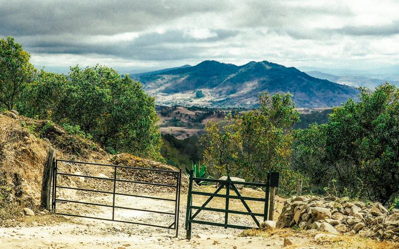 Nikaragua vadilerinde yeşile ve sanata adanan hayat Alberto Gutierrez 2