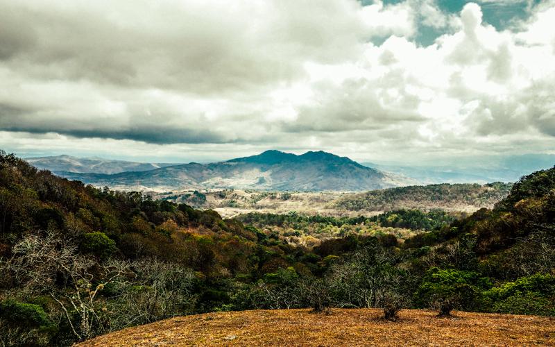 Nikaragua vadilerinde yeşile ve sanata adanan hayat Alberto Gutierrez 4