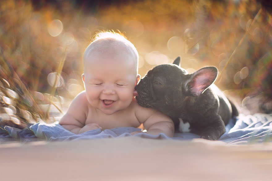 baby-dog-friendship-french-bulldog-ivette-ivens-1  Birbirlerini kardeş zanneden bebek Dilan ve yavru bulldog baby dog friendship french bulldog ivette ivens 1