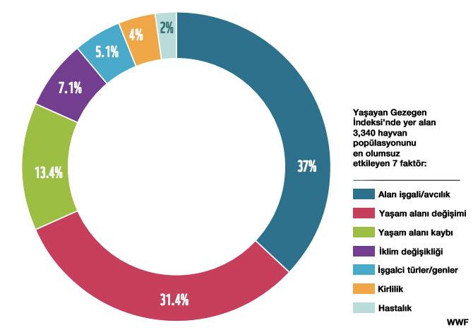 wwf grafik 1