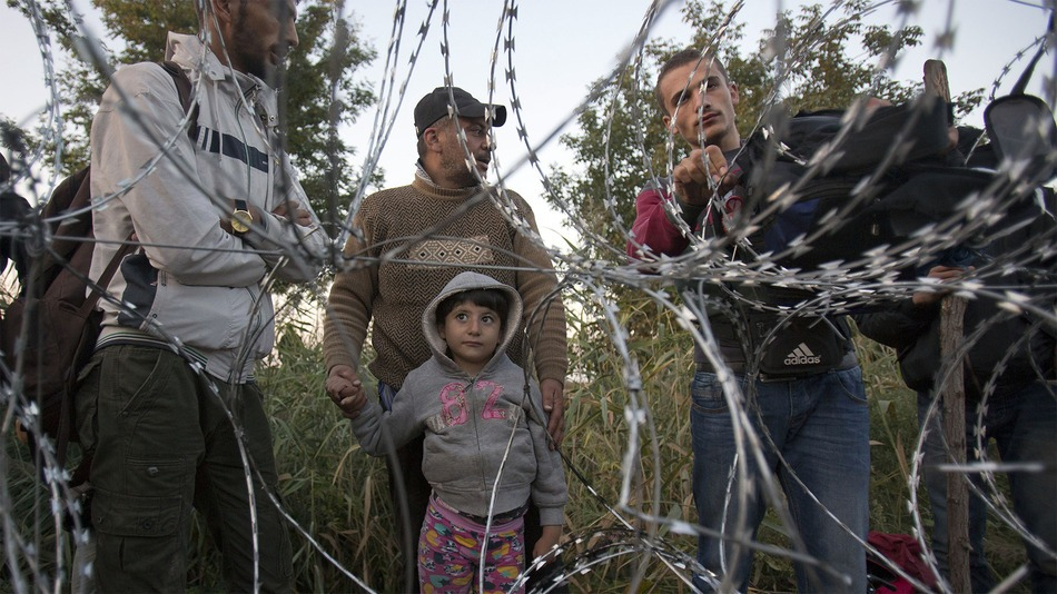 İzlanda Mülteci 2