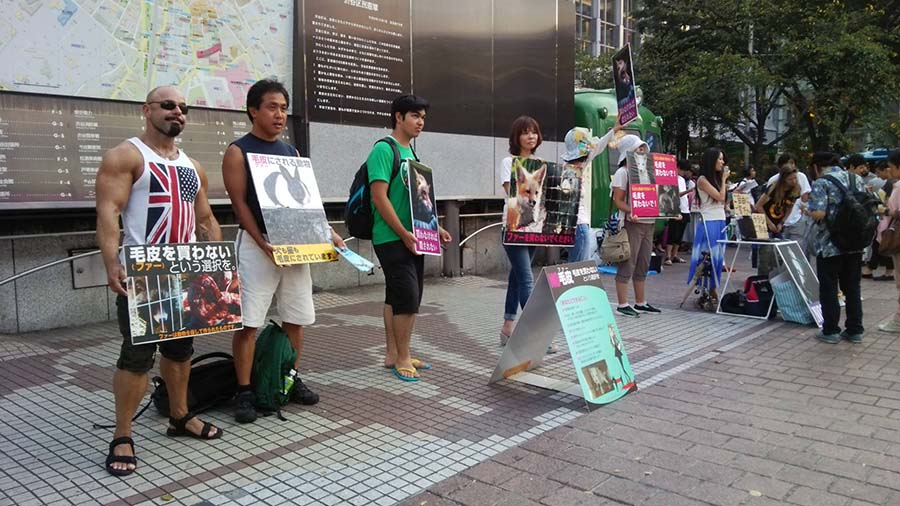3. Animal Rights Center Japan