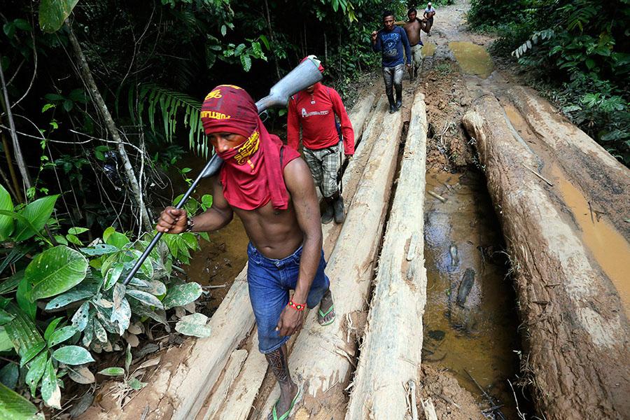 Ka'apor savaşçıları ormancıları bulmak için keşif yürüyüşü yapıyorlar (Fotoğraf: Lunae Parracho/Reuters)