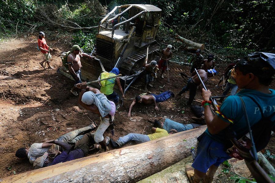 Ka'apor savaşçıları ormancılara vurmak için sopa kullanıyor (Fotoğraf: Lunae Parracho/Reuters)