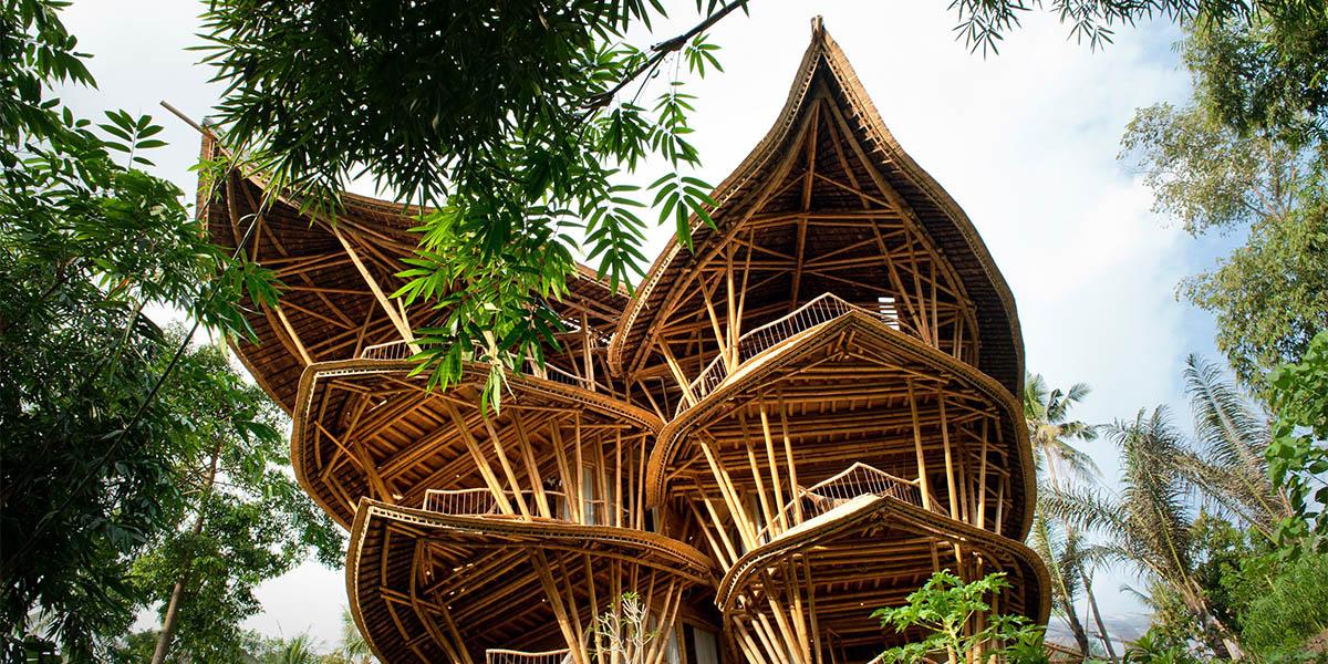 İşini doğal yaşam özlemiyle bırakan Hardy bambu evler inşa ediyor