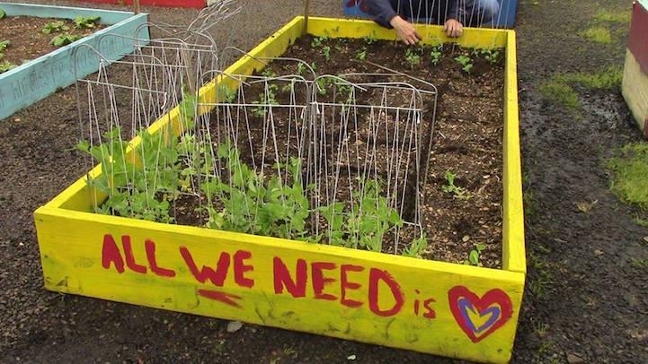 Evsizlerin sürdürülebilir yaşam için ekolojik tarım öğreniyor 1
