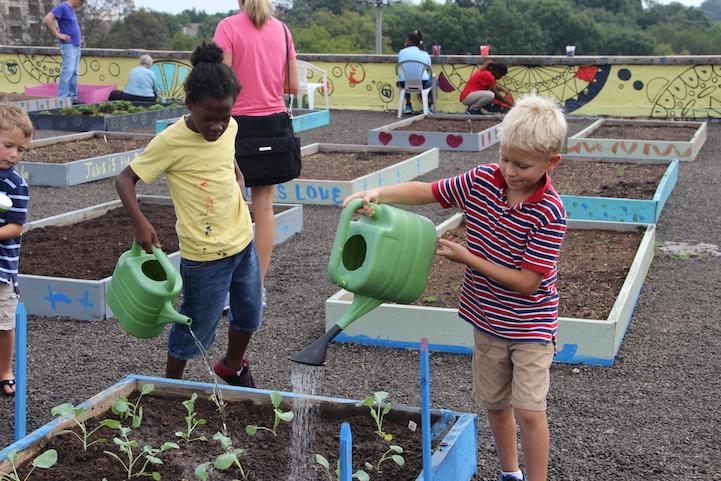 Evsiz bireylerin sürdürülebilir yaşam için ekolojik tarım öğreniyor 6