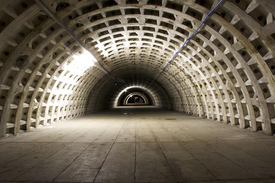 İkinci Dünya Savaşı'ndan kalma sığınak dünyanın en büyük yeraltı tarlasına dönüştürüldü