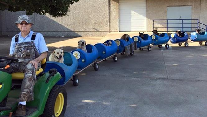 """Köpek Varili 2  Varillerden yaptığı """"Köpek Treni"""" ile terk edilmiş köpekleri gezintiye çıkarıyor K C3 B6pek Varili 2"""