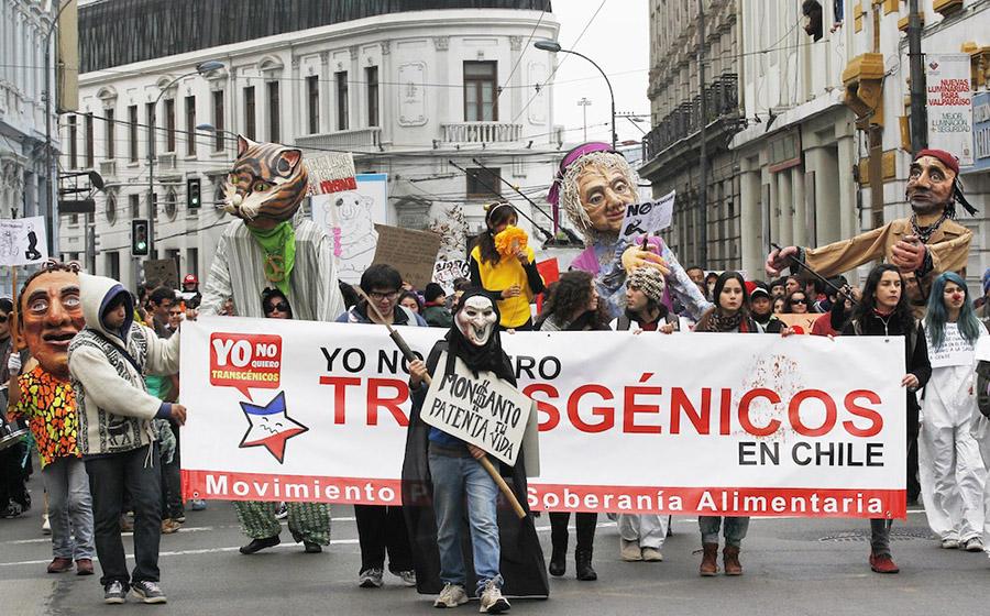 Şili'de 2013 yılında düzenlenen Monsanto karşıtı yürüyüş (Fotoğraf: Eliseo Fernandez)