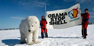 Kuzey Kutbu'ndan mutlu eden gelişme: Shell petrol arama faaliyetlerini durduruyor