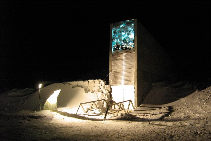 Svalbard Tohum Deposu